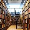 Библиотеки в Тереньге