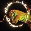 Цирки в Тереньге